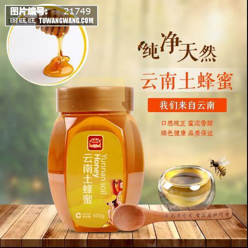 淘宝天猫蜂蜜主图食品直通车 (编号:21749)图片