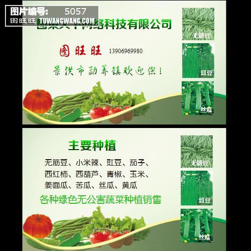 蔬菜水果名片模板下载
