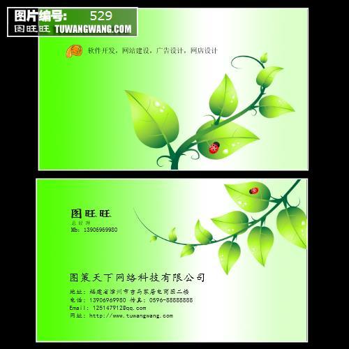 黄绿色欧式花纹装饰名片 (编号:529)