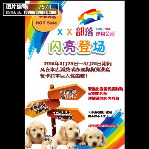 宠物宣传单 (编号:7574)